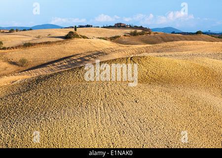 Gepflügte Land in der Region zwischen Siena und Asciano, Crete Senesi, Provinz Siena, Toskana, Italien - Stockfoto