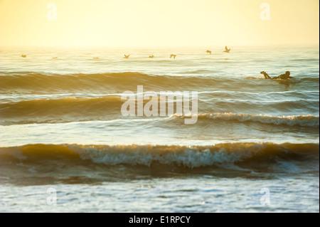 Surfer genießen die Einsamkeit eines frühen Morgens, Sonnenaufgang-Surf-Session in Jacksonville Beach an der Ostküste - Stockfoto