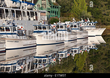 Boote im Hafen von Ucluelet, Vancouver Island, British Columbia, Kanada - Stockfoto