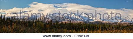 Schneebedeckten Gipfel des Denali National Park und Herbstfarben von George Parks Highway, Alaska, Vereinigte Staaten - Stockfoto