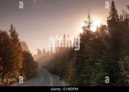 Dawn bricht auf der Mijinemungshing Straße im Lake Superior Provincial Park, Ontario, Canada - Stockfoto