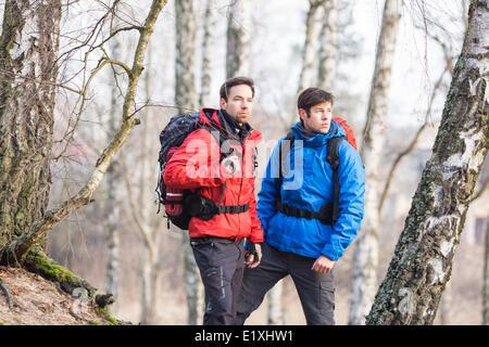 Junge männliche Wanderer im Wald - Stockfoto