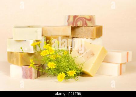 Gruppe von handgemachte Seife mit pflanzlichen material - Stockfoto