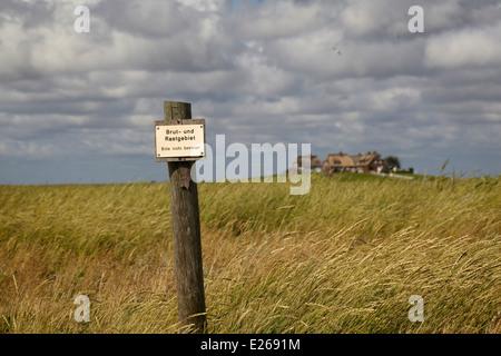 """Warnschild """"Brut Und Rastgebiet"""" anzeigenden Zuchtgebiete auf der Hallig Hooge im Worldheritage Wattenmeer - Stockfoto"""