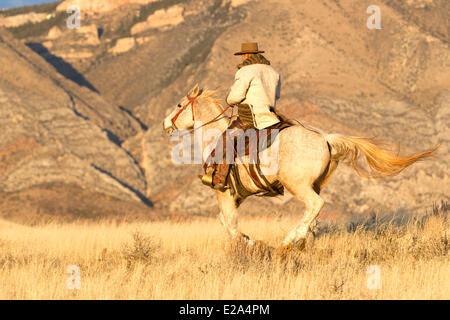USA, Wyoming, Shell, das Versteck Guest Ranch, Cowboy, Tom - Stockfoto