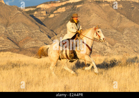 USA, Wyoming, Shell, das Versteck Guest Ranch, Cowboy, Tom - Stockfoto