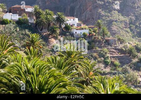 Spanien, Kanarische Inseln, Teneriffa, Parque Rural de Teno, kleinen Dorf Masca - Stockfoto