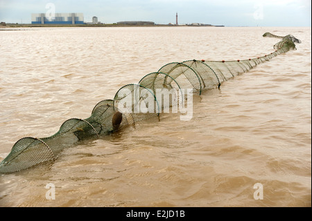 Traditionelles Fischen für Sohlen und Aale mit Doppel endete Fyke Netze auf der Humber Mündung Wattenmeer - Stockfoto