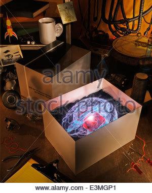 Neue leuchtende Gehirn im Kasten auf der Werkbank - Stockfoto