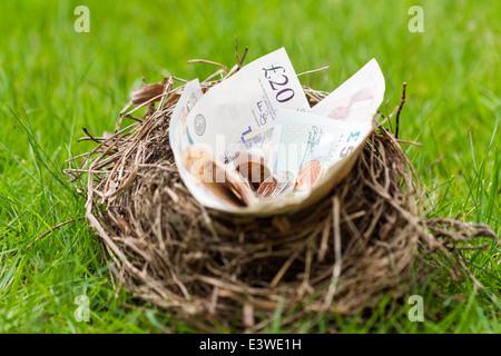Nest mit britischen Geld gefüllt. Dieses Nest wurde eine verlassene Nest gefunden in einer Hecke, die entfernt wurde. - Stockfoto