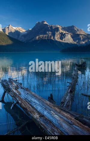 Emerald Lake im Morgengrauen mit den Gipfeln des Bereichs Präsident hinaus Yoho Nationalpark, Britisch-Kolumbien, - Stockfoto