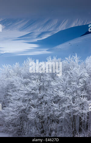 Verschneite Piano Grande im Winter. Monti Sibillini Nationalpark, Umbrien, Italien, Februar 2010. - Stockfoto