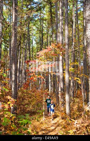 Wandern im Herbst im Hawn State Park in Missouri, USA - Stockfoto