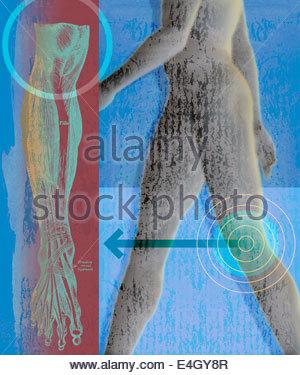 Mann zu Fuß mit Ziel über Knie und anatomische Zeichnung - Stockfoto