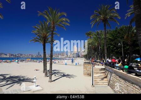 Blick auf Playa De Poniente Strand, Benidorm Resort, Costa Blanca, Provinz Valencia, Spanien, Europa. - Stockfoto