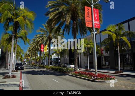Palmen auf dem Rodeo Drive, Luxus-shopping-Straße in Beverly Hills, Los Angeles, Kalifornien, USA - Stockfoto