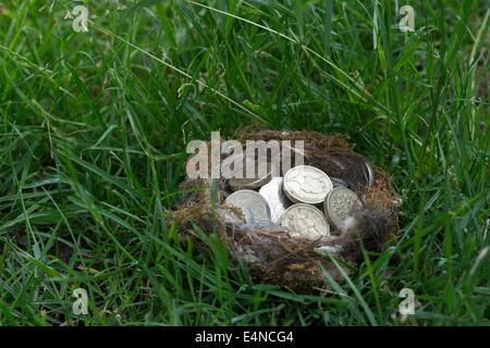 Englische Münzen in einem Vogelnest auf Rasen - Stockfoto