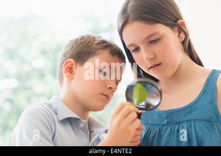 Junge und Mädchen (8-9, 10-11) auf der Suche durch Lupe - Stockfoto