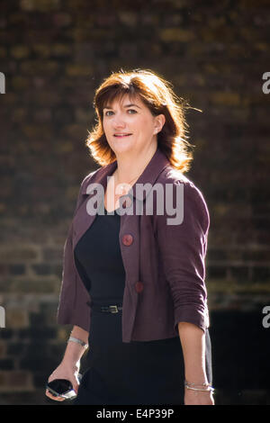 London, UK. 15. Juli 2014. Premierminister David Cameron kündigt Kabinettsumbildung Credit: Guy Corbishley/Alamy - Stockfoto