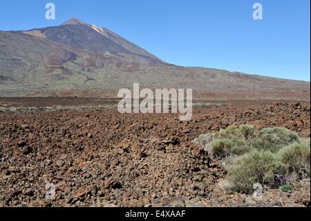Mount Teide Vulkan Nationalpark mit Lavastrom im Vordergrund, Teneriffa - Stockfoto