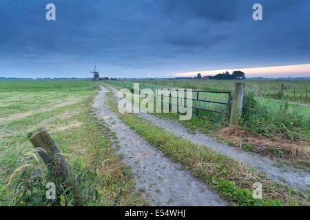 Natur Boden Weg nach Morgen, Holland Windmühle - Stockfoto