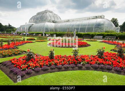 Außenseite des Palmenhauses im königlichen botanischen / botanische Gärten Kew-Garten-UK. - Stockfoto