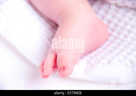 Neugeborenes Baby erstreckt sich in einem hellen und luftigen Kindergarten Körbchen - Stockfoto