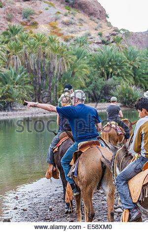 Menschen, die Reiten auf Pferd - Mexiko - Stockfoto