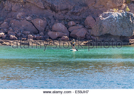 Frau stand up paddleboarding im Meer in der Nähe von Mountain - Mexiko - Stockfoto