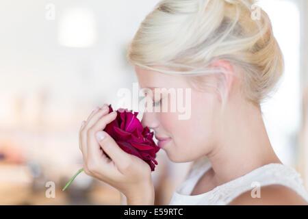 Frau duftende rose - Stockfoto