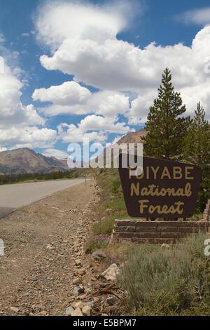 Ein Schild neben der Straße betreten die Toiyabe National forest Eastern Sierra Nevada - Stockfoto