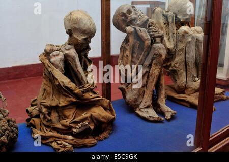 Mummys von Leymebamba - Museum von CHACHAPOYAS. Abteilung von Amazonas. Peru - Stockfoto