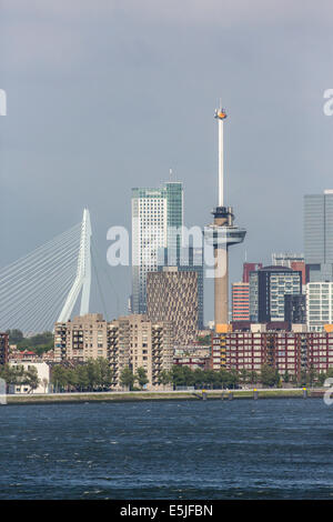 Niederlande, Rotterdam, Skyline mit Euromast und Erasmus Brücke. Sunrise - Stockfoto