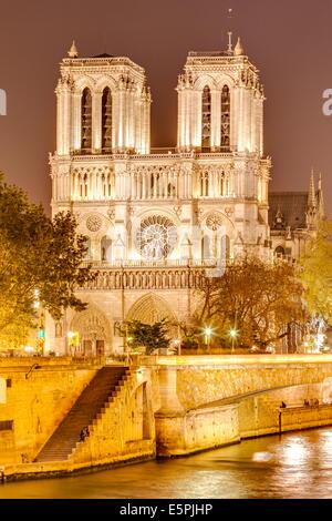 Notre Dame de Paris Kathedrale, UNESCO-Weltkulturerbe, Paris, Frankreich, Europa - Stockfoto