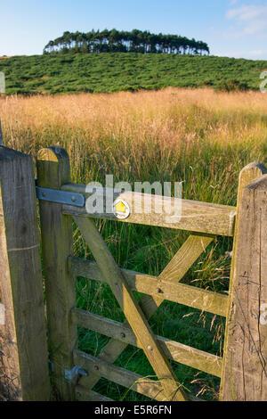 Ein Tor zum Bromlow Callow Hill, South Shropshire, England - Stockfoto