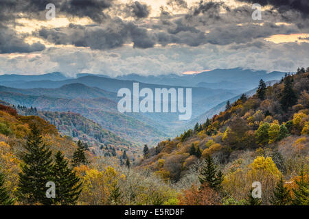 Morgendämmerung in den Smoky Mountains National Park, Tennessee, USA. - Stockfoto