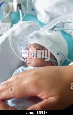 Vorzeitigen Neugeborenen unterstellt Unterstützung der Atmung, indem ihre Hände über ihr Baby zu beruhigen, Neonatalogy - Stockfoto