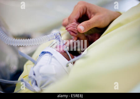 Vorzeitigen Neugeborenen platziert unter Unterstützung der Atmung, Neonatalogy Abteilung, Robert Debre Krankenhaus, - Stockfoto