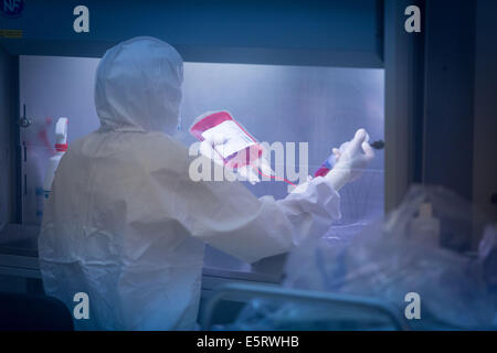 Techniker, die Vorbereitung einer hämatopoetischen Stammzellen Zellen Tasche, Zelle Therapieeinheit CTSA in Clamart, - Stockfoto