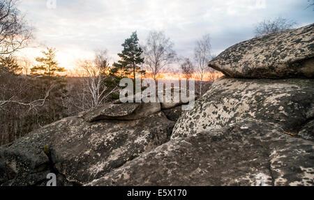 Ansicht von Geröll und Baumkronen bei Sonnenuntergang - Stockfoto