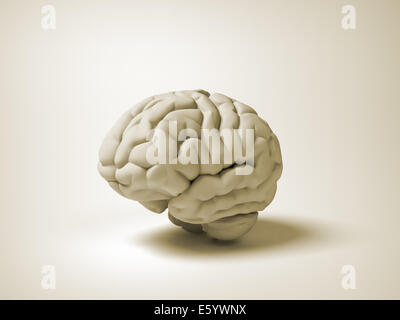 Konzeptionelle menschliche Gehirn - 3d Render Abbildung - Stockfoto