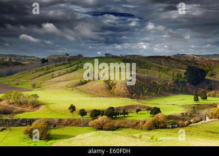 Landschaft mit Ackerland und bewölkten Himmel, Nordinsel, Neuseeland - Stockfoto