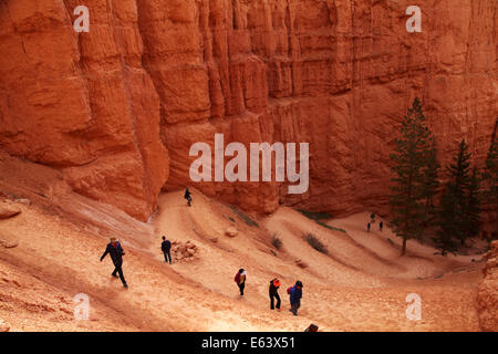 Wanderer auf Zick-Zack-Abschnitt der Navajo Loop Trail, Bryce-Canyon-Nationalpark, Utah, USA - Stockfoto