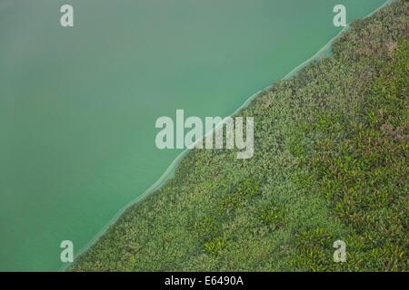 Grüner See, Rio De Janeiro; Brazilien - Stockfoto