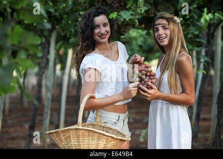 Junge Teen-Mädchen im weißen Kleid nimmt Trauben im Weinberg - Stockfoto