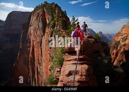 """Wanderer auf schmalen """"Leap of Faith"""" Teil des Angels Landing Track, mit 1000ft / 305m schiere auf beiden Seiten - Stockfoto"""