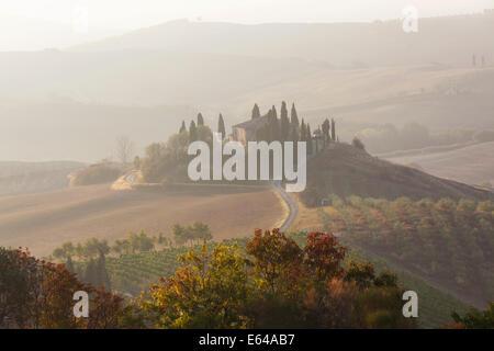 Am frühen Morgen, Val d ' Orcia, Toskana, Italien