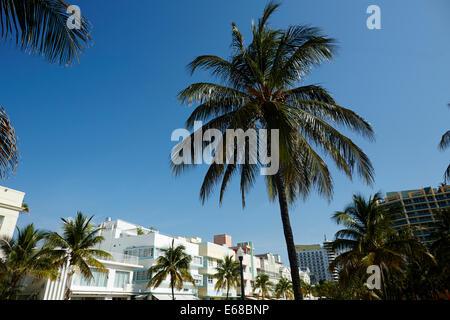 Ocean Drive South Beach Miami in Florida USA, Art-deco-Geschäfte, Restaurants und Hotels entlang der Strandpromenade - Stockfoto