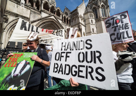 London, UK. 21. August 2014. Dachs Cull Protest vor dem Royal Courts of Justice in London Credit: Guy Corbishley/Alamy - Stockfoto