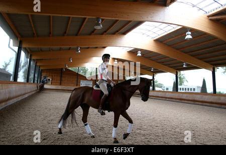 London, UK. 21. August 2014. Alex Hua Tian reitet mit Don während einer Übung in gebunden Ställen in der Nähe von - Stockfoto